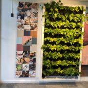 Vindfang Jobcenter Roskilde Bettina Therese
