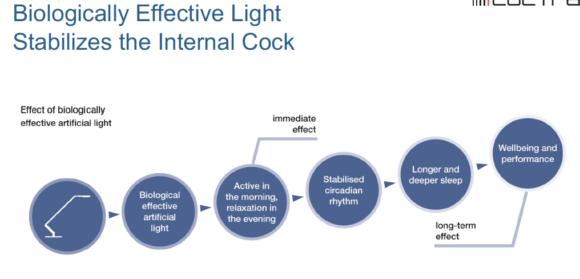 Biologically effective light